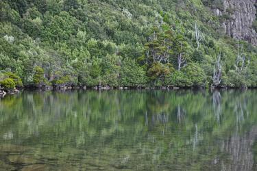 Hartz Mountains, Tasmania, Image credit: Emily Chapman-Searle